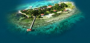 Ariel view of the Caye
